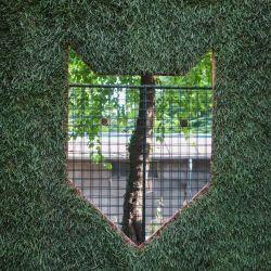 Posibilitatea unei grădini urbane